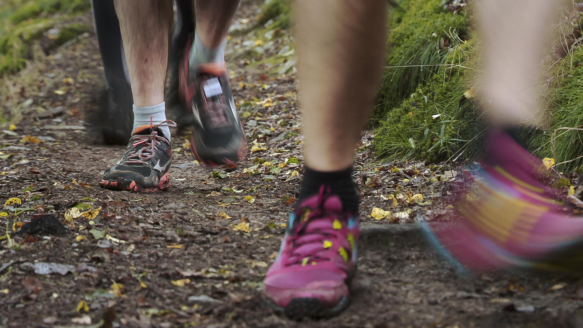 Trail climat91501